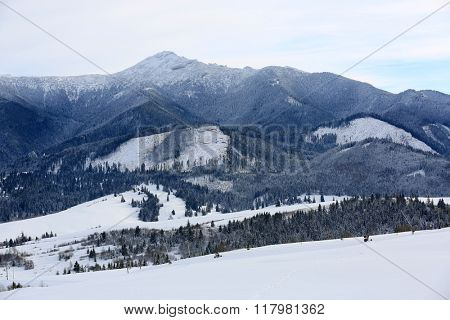 Winter scene in mountains. Slovakia, West Tatra Mountains