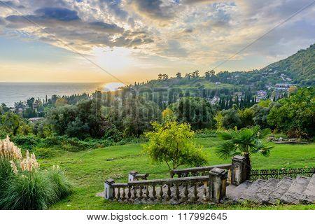 Picturesque summer landscape