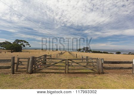 Closeup Of Wooden Fence And Gate