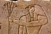 pic of horus  - The hawk headed god Horus holding a bouquet of lotus blossom - JPG