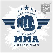 ������, ������: Fight club MMA Mixed martial arts