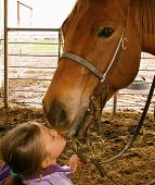 stock photo of say goodbye  - young girl saying goodbye to her dearly loved horse - JPG