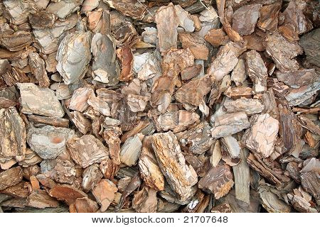 Pine Bark Chips Texture