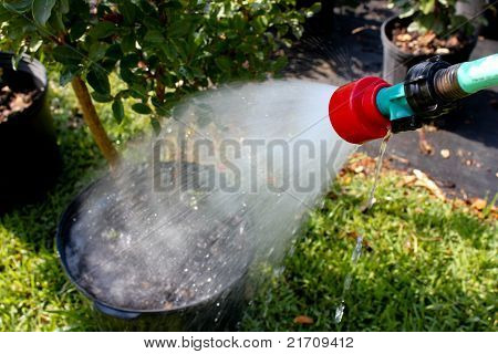 Water hose watering garden potted plats