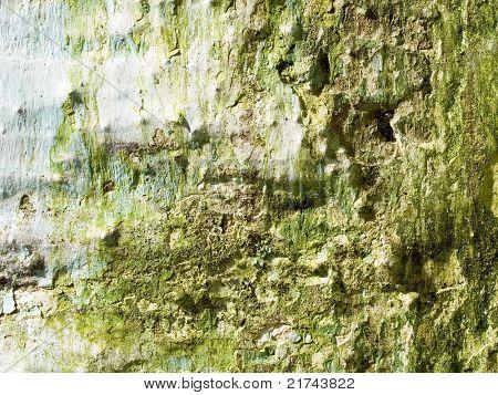 Grunge Wand Closeup Texture Background.