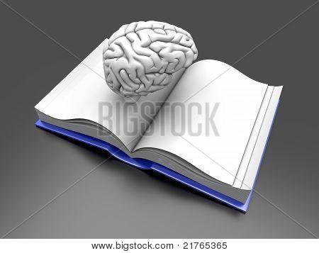 Libro de cerebro.