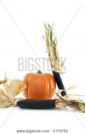 Corn And Pumpkin