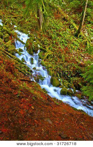Spectacular Falls