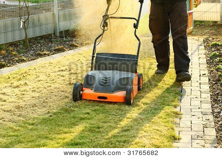 Using a scarifier to improving quality of the lawn