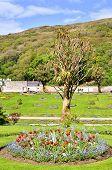 Постер, плакат: Викторианский стеной сад Kylemore Ирландия