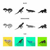 Vector Design Of Tail And Fauna Sign. Collection Of Tail And Environment Stock Symbol For Web. poster