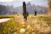 Hiking Trail In The Middle Of Meadows. Animal Enclosure, Blurred Hiker In The Background. Meadow Flo poster