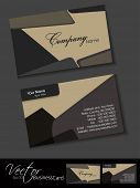Professional business card set, template or visiting card. Artistic, abstract corporate look in dark poster