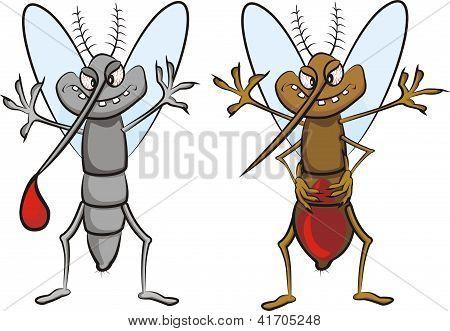 gluttonous mosquito