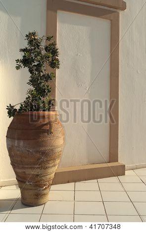 Greek Amphora With Olive Tree
