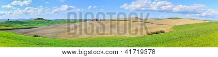 Tuscany, Rural  Landscape. Rolling Hills, Countryside Farm, Tree