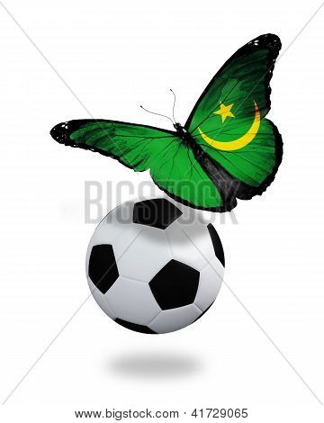 Concept - Butterfly With  Mauritanian Flag Flying Near The Ball, Like Football Team Playing