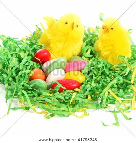 Easter Chicks With A Colourful Clutch Of Eggs