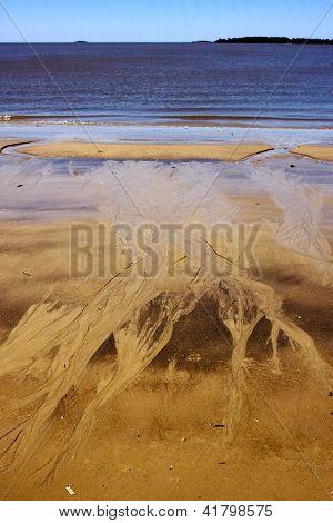 Beach And  Coastline  In Rio De La Plata