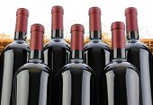 Closeup of seven Cabernet Sauvignon Wine Bottles in Crate with Straw on a white background.