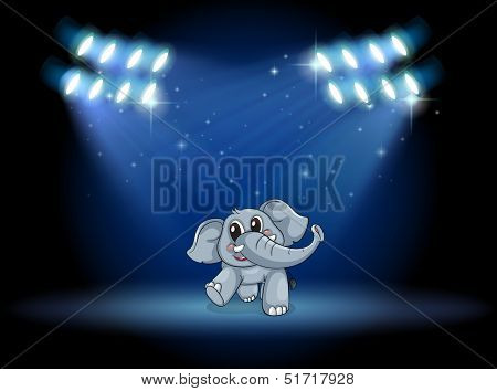 Illustration of an elephant dancing at the stage under the spotlights