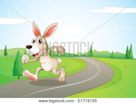 Illustration of a running rabbit at the road