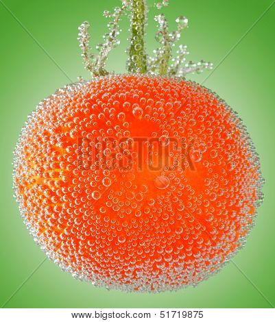 A Fresh Organic Tomato