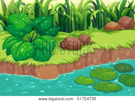 Illustration of the green plants along the river