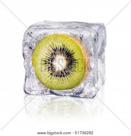 Kiwi In An Ice Cube