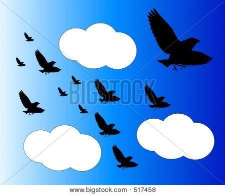 Bird In Flight 7