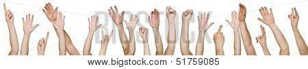 Lots of raised hands isolated on white background