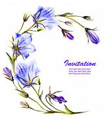 picture of blue-bell  - Watercolor painting of the bell flowers - JPG