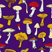picture of morchella mushrooms  - Seamless pattern with mushrooms - JPG