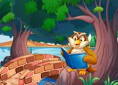 Illustration of an owl reading a book under the tree near the bridge