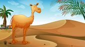 stock photo of sandstorms  - Illustration of a desert with a lonely camel - JPG