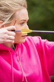 stock photo of archery  - Focused blonde practicing archery wearing pink jumper - JPG