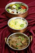 Indian copper dishes with beef rogan josh, white and yellow rice and a salad, shot with a tilt-shift