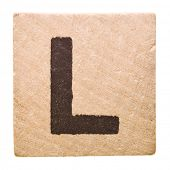 Block with Letter L isolated on white background