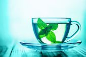 stock photo of mint-green  - mint tea with fresh mint leaves - JPG