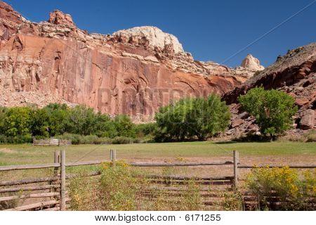 Field In Utah