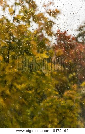 Autumn Rain Background
