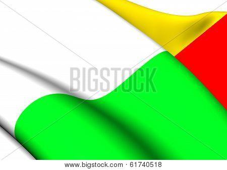 Flag Of Plzen