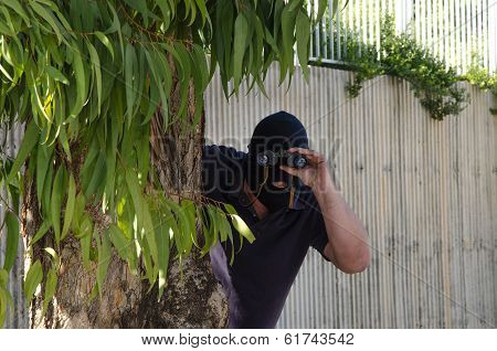 Footpad Stares At You Through Binoculars