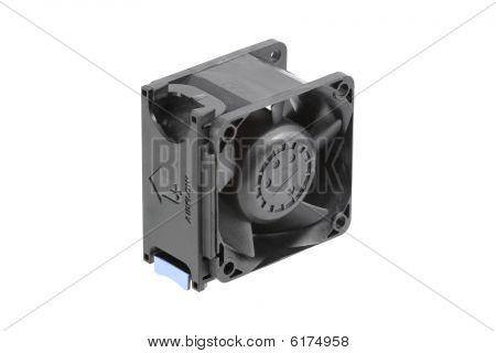 Negro ventilador