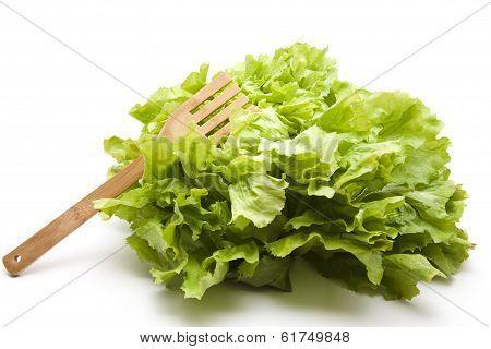 Endive salad with wooden fork