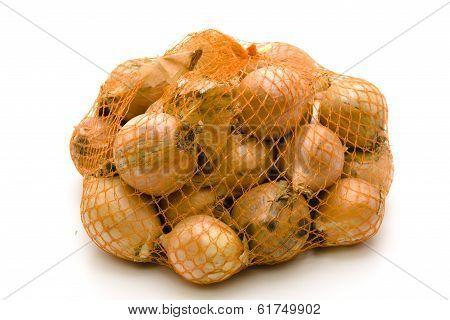 Fresh Onions in the Net