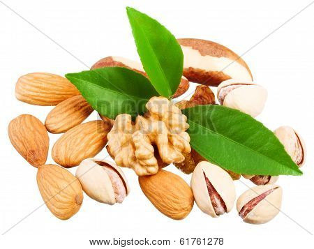 Assortment of tasty nuts with leaves