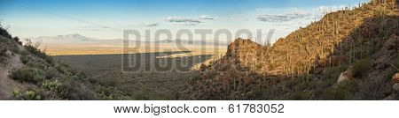 180 degree panorama of sonoran desert in Arizona at dawn