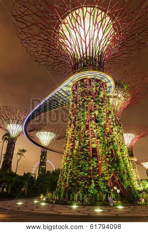 SINGAPORE - DECEMBER 31, 2013: Night view of Supertree Grove at Gardens by the Bay. Futuristic park spans 101 hectares is to become Singapore premier urban outdoor recreation space and national icon