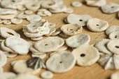 The Round Cockleshells Scattered On A Wooden Surface